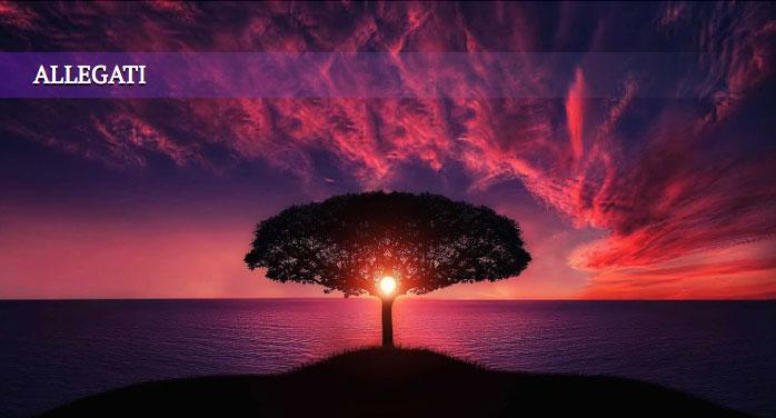 Gnosi Tradizione e Rivelazione